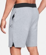 UA Shorts grey