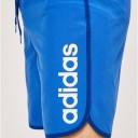 Adidas Linear Swim Short 2
