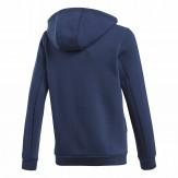 Adidas Kids hoodie 2